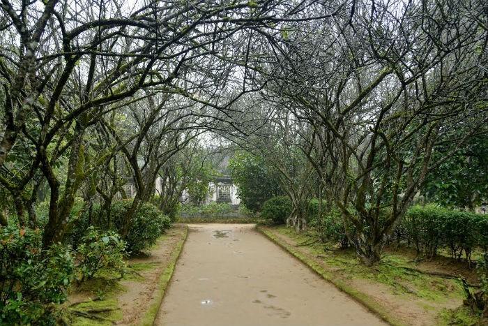 an hien garden house landscape